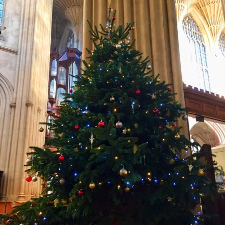 Christmas tree inside the Abbey