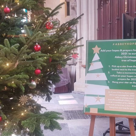 Christmas tree in the Abbey with Tree of Hope information board